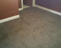 Photo #1: CARPET INSTALLATION by PATRICK