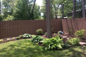 Photo #1: Affordable Landscape and lawn care! 10years exp!