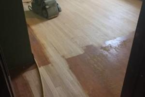 Photo #3: Morrison Hardwood floor refinishing and installation