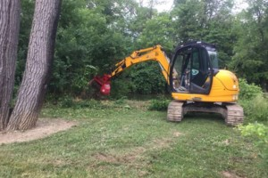 Photo #7: Curry Outdoors Inc. AFFORDABLE LAND CLEARING