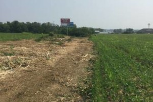 Photo #5: Curry Outdoors Inc. AFFORDABLE LAND CLEARING