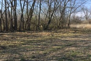 Photo #2: Curry Outdoors Inc. AFFORDABLE LAND CLEARING