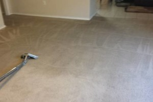 Photo #10: CARPET CLEANING n UPHOSLTERY