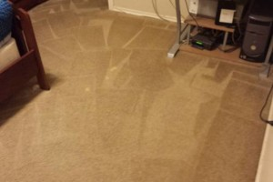 Photo #8: CARPET CLEANING n UPHOSLTERY