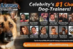 Photo #4: Dog Training Off Leash Laredo K9 Training
