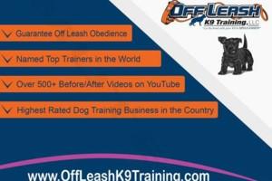 Photo #3: Dog Training Off Leash Laredo K9 Training