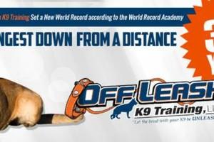 Photo #2: Dog Training Off Leash Laredo K9 Training