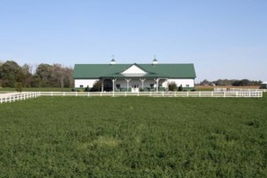 Photo #4: 12' x 12' Matted Stalls. Horse Boarding - $250/month