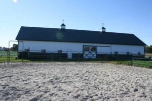 Photo #3: 12' x 12' Matted Stalls. Horse Boarding - $250/month