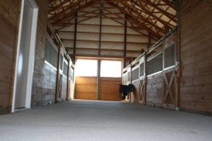 Photo #1: 12' x 12' Matted Stalls. Horse Boarding - $250/month