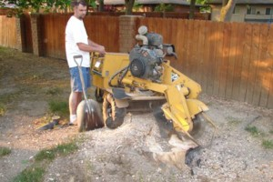 Photo #2: FULLY INSURED Field Mowing/Finish Mowing/Tree Work/Garden Tilling
