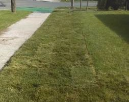 Photo #1: Landscaping and Lawn care - mow, mulch, plant flowers...