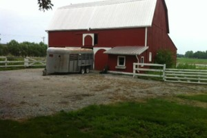 Photo #2: Country Pet Sitting - ANIMAL FARM & HOUSE
