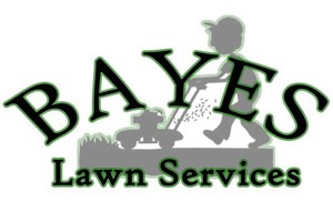 Photo #10: Bayes Lawn Services (not land scaping)