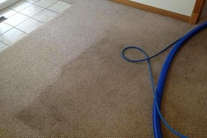 Photo #1: CUSTOM STEAM LLC. Carpet cleaning 3 area special