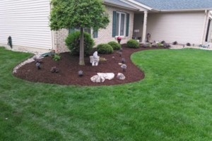 Photo #1: Longardner Landscaping/Gutter and roof cleaning