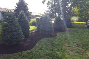 Photo #8: Bork Landscaping, llc. Landscaping/Tree Removal