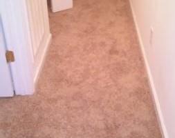 Photo #2: Danny's floor coverings - carpet, vinyl, hardwood, luan, and hardwood
