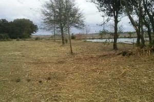 Photo #8: DLC forestry solutions. Land Clearing, Lot Clearing, Tree Removal...
