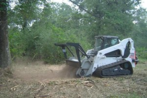 Photo #6: DLC forestry solutions. Land Clearing, Lot Clearing, Tree Removal...
