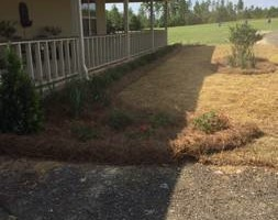 Photo #5: Matts landscaping -weedeating, trimming bushes, mowing...