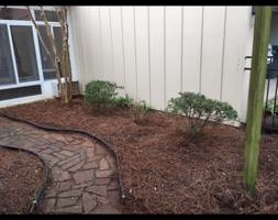 Photo #3: Matts landscaping -weedeating, trimming bushes, mowing...