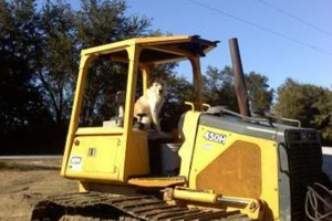Photo #1: DOZER/OPERATOR FOR HIRE