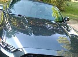 Photo #16: Xtreme Mobile Auto Detailing