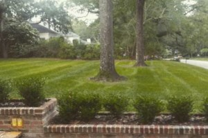 Photo #17: Hughes 360 Landscaping and Property Maintanence