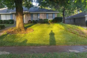 Photo #15: Hughes 360 Landscaping and Property Maintanence