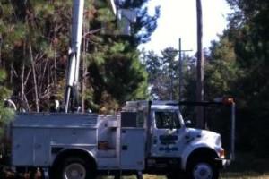 Photo #9: HAMMCO TREE SERVICE