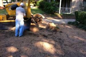 Photo #7: HAMMCO TREE SERVICE