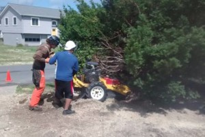 Photo #9: Tree, Irrigation and Landscape services
