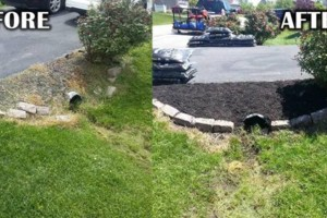 Photo #8: Addor LANDSCAPING / Grass cutting $35- Mulching - Stone beds - Weed and Feed