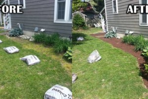 Photo #6: Addor LANDSCAPING / Grass cutting $35- Mulching - Stone beds - Weed and Feed
