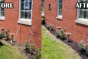 Photo #2: Addor LANDSCAPING / Grass cutting $35- Mulching - Stone beds - Weed and Feed