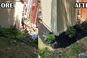 Photo #1: Addor LANDSCAPING / Grass cutting $35- Mulching - Stone beds - Weed and Feed