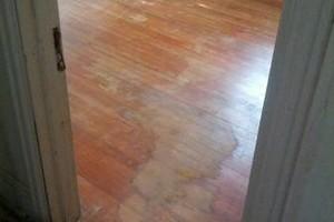 Photo #16: M&T Hardwood Floors