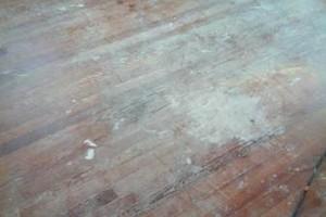 Photo #14: M&T Hardwood Floors