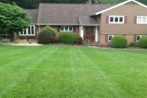Photo #4: North Star Lawn Care