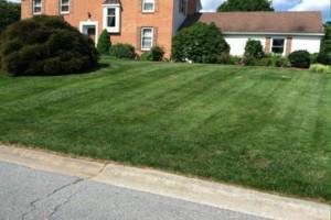 Photo #2: North Star Lawn Care