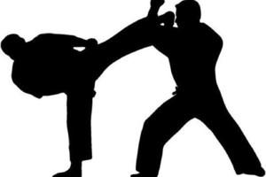 Photo #1: Learn Self Defense / Martial Arts Private Lessons