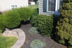 Photo #17: Carefree Lawn Service