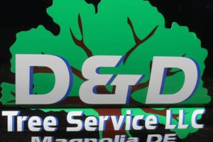 Photo #1: D&D Tree Service, LLC