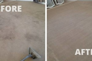 Photo #18: Zap Carpet Cleaning