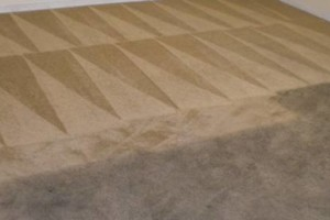 Photo #15: Zap Carpet Cleaning