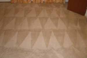 Photo #14: Zap Carpet Cleaning