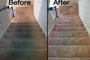 Photo #13: Zap Carpet Cleaning