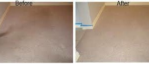 Photo #9: Zap Carpet Cleaning