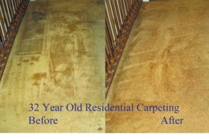 Photo #8: Zap Carpet Cleaning